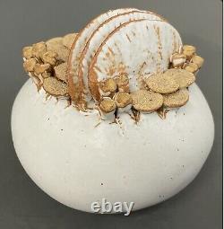 Mid Century Warren Hullow Signed Vintage Sea Form Studio Art Pottery Rare 5